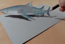 Drawing a Gray Shark – 3D Illusion